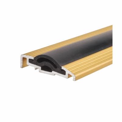 Sealmaster Cyclone Seal - 1000mm - TDG Threshold - Gold
