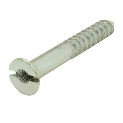 Steel Mirror Screw - 8 x 2