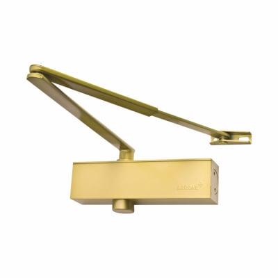 Arrone® AR8200 Door Closer - Gold