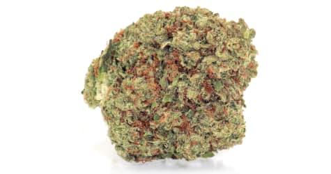 High Garden - White Tahoe Cookies - 3.5g