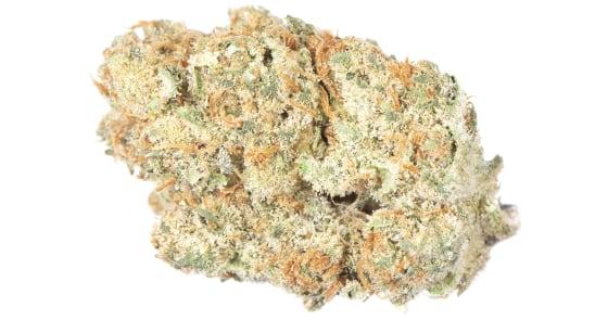 Grizzly Peak Farms - Orange Dreamsicle - 3.5g