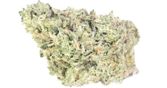 Source Cannabis - Dosi Face - 3.5g