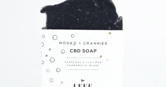 Leef Organics - Charcoal & Clay - Nooks + Crannies Soap
