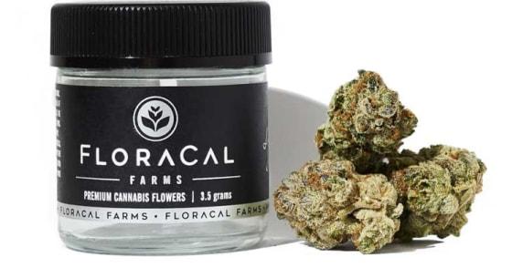 FloraCal - Dosidos - 3.5g