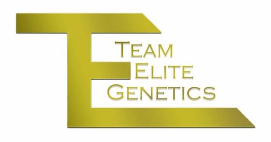 Team Elite Genetics - Peach Ozz - Pre-Rolls 1g