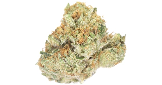 Source Cannabis - SFV OG - (3.5g) - weight