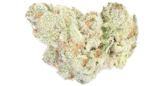 Cresco - Lemon Bean - (3.5g) - weight