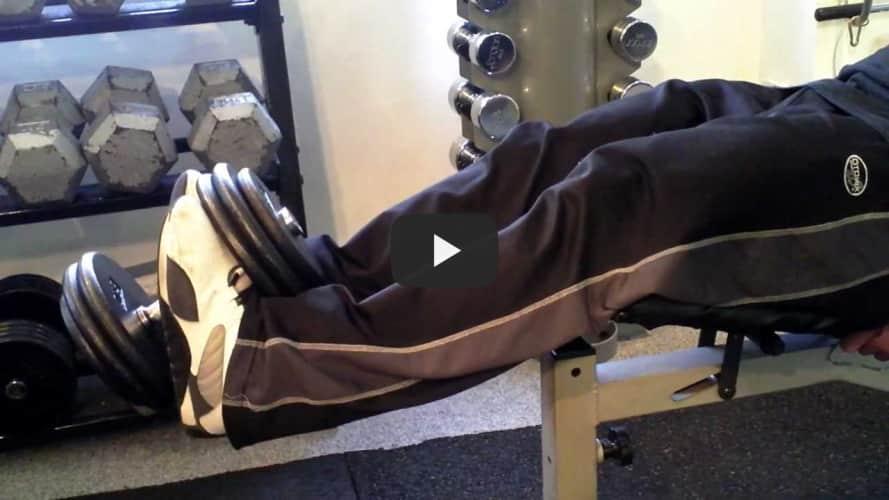 Dumbbell Leg Extension
