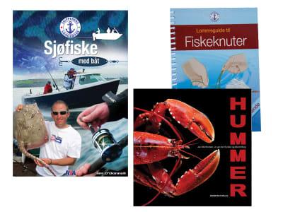 Mat og fiske