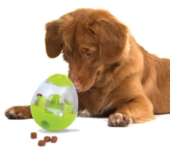 Easy Treat: Food dispensing pet toy