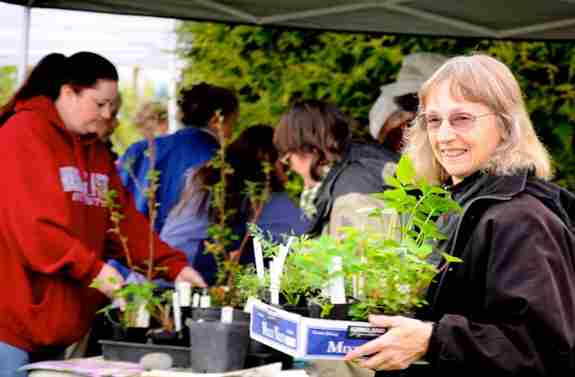 Also available April 1st: the Central Puget Sound Chapter spring native plant sale 2021. Order online, curbside pickup in May. For questions, email info@wnps.org. https://www.wnps.org/central-puget-sound