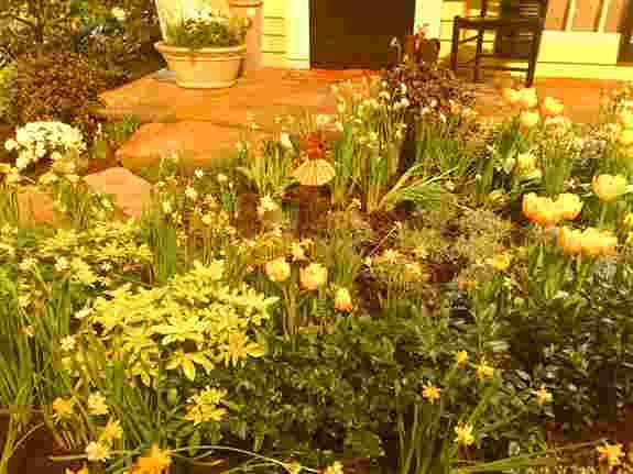 Sunflower Faerie in Susan Brown Landscape Design Garden, 2018 NWFGS