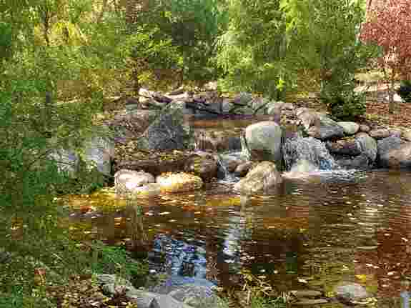 A serene waterfall space was created with a 40 foot pond in this yard to take your daily cares away.  It also renovated the yard from the nasty swamp that was the initial problem area, problem was solved!