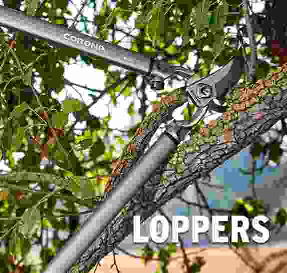 Corona loppers are available in a variety of sizes and features designed for easier cutting and extending your reach.