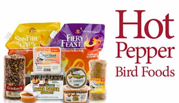 Hot Pepper Bird Food is the Future of Bird Feeding. Birds have no receptors internally or externally to react to Capsaicin, but mammals do. So if you are having issues with critters getting into your bird food, Feed the Birds, Not the Critters!