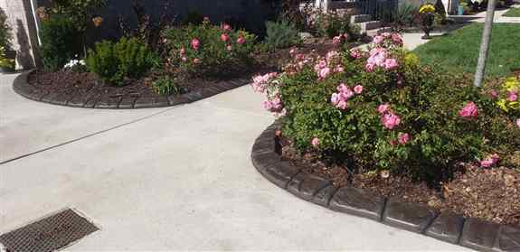 Decorative concrete curbing options are endless!