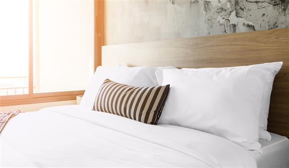 100% Bamboo Duvet Set with Pillow Cases
