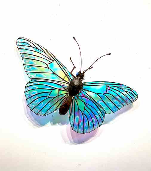 Butterfly Sculpture- I make butterflies in a variety of sizes but this one has a 28 inch wingspan with its big dynamic wings. Opaque turquoise glass has been fired onto the dichroic wings in a spotted pattern.<br />this size sells for 2400.00