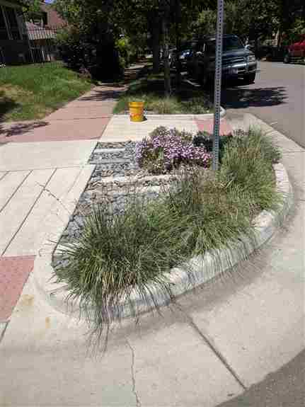 Small, high traffic spaces can be tricky. This combination of rock with native grass looks great in all seasons, and is extremely drought tolerant.