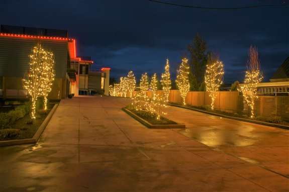 We love lighting up your home or business every holiday season