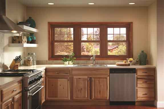 EcoSmart Replacement Windows