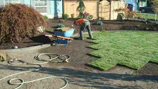 sod install, we use only sod that was grown in top soil, we will not use sod that was grown with fillers like sand or chopped mulch. We use sod cutters to remove your current lawn to ensure we get the roots of all weeds and prior grass out. We then level