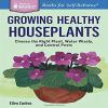 Ellen Zachos - Houseplants