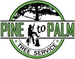 Pine to Palm Tree Service
