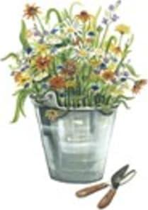 Wildflower Seed & Tool Company