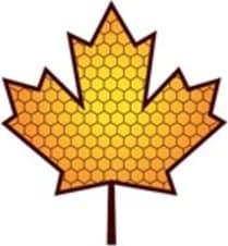 Sappy Pollen LLC