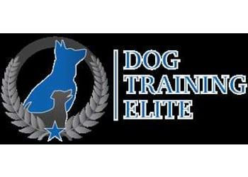 DOG TRAINING ELITE