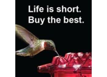The Hummingbird Feeder - HB Feeder LLC