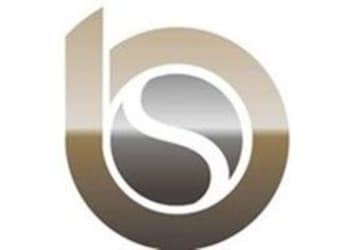 Bradley Stone Industries, Ltd