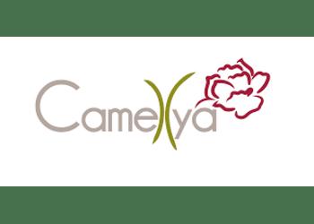 EBM Laser - Camellya