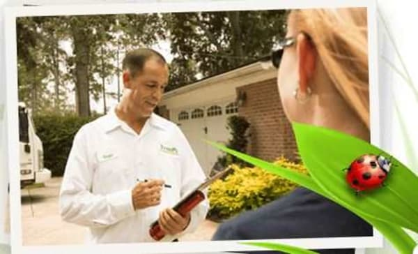 Gain Peace of Mind With Our Hassle-Free Pest Control