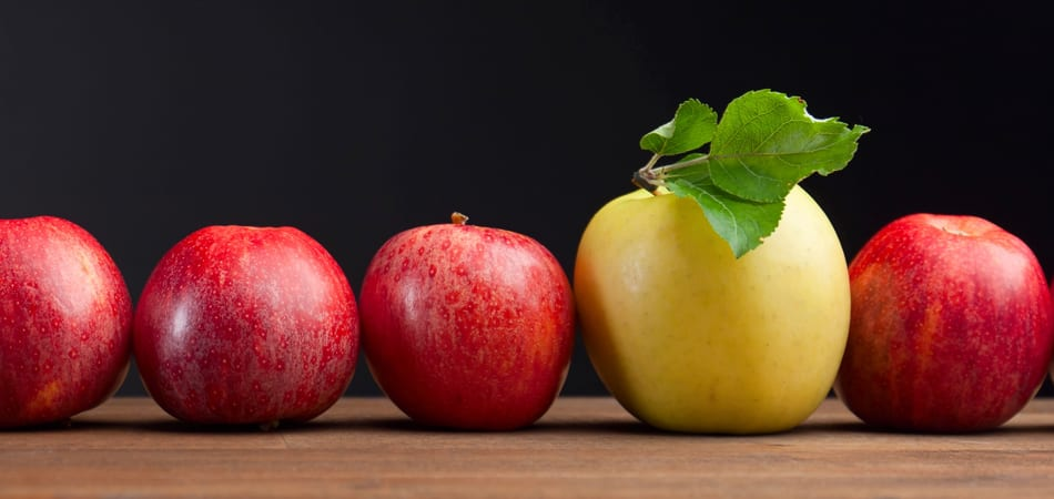 Row of small red apples with one yellow apple with pretty green leaves