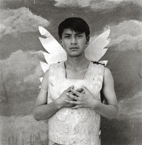 La Coraza Palma, Luis Gonzalez  (Guatemalan, b.1957)