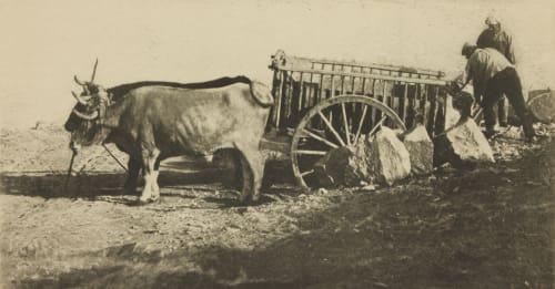 Bullock Cart – Toledo Annan, James Craig  (Scottish, 1864-1946)