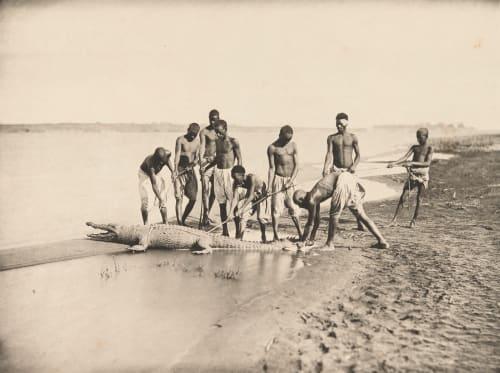 PL CXXXIX Capture D'un Crocodile (proof) Béchard, Émile  (French, 1840-1891)