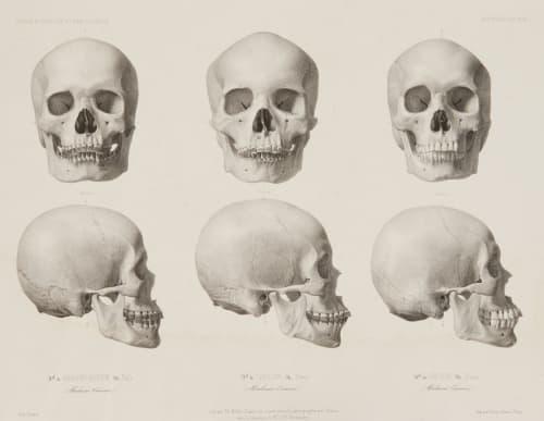 PL. 44 Ile Bali – Ile Timor Bisson, Louis-Auguste  (French, 1814-1876)