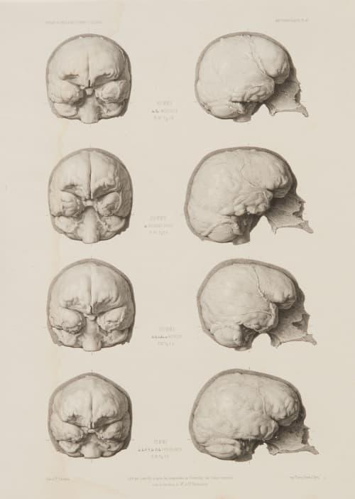 PL. 47 Araucanie – Chine – Péninsule de Malacca – Ile Van-Diemen Bisson, Louis-Auguste  (French, 1814-1876)
