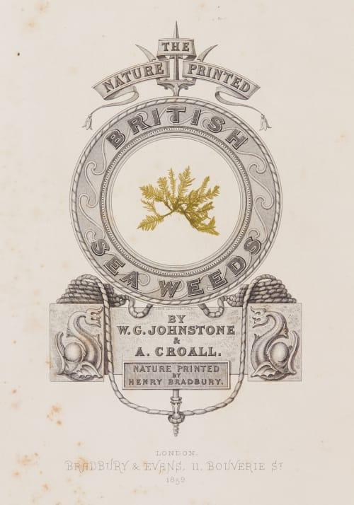 Cover Bradbury, Henry  (British, 1831-1860)