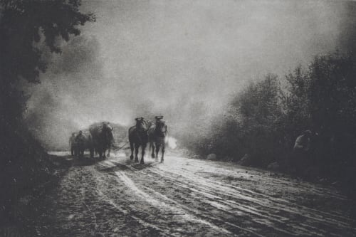 Misonne, Leonard  (Belgian, 1870-1943)