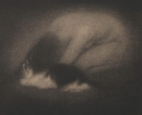 Nude with Cat Steichen, Edward  (American, 1879-1973)