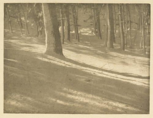 Winter Shadows Coburn, Alvin Langdon  (American, 1882-1966)