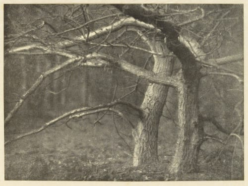 Storm Light Cadby, Will A.  (British, 1866-1937)