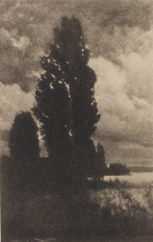 Poplars and Clouds Watzek, Hans  (Austrian, 1848-1903)