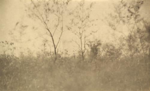 Spring Keiley, Joseph  (American, 1869-1914)