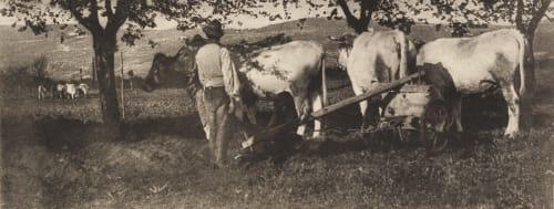 Ploughing Team Annan, James Craig  (Scottish, 1864-1946)