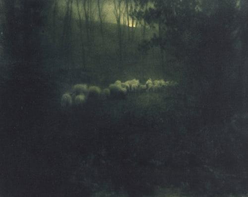 Pastoral – Moonlight Steichen, Edward  (American, 1879-1973)